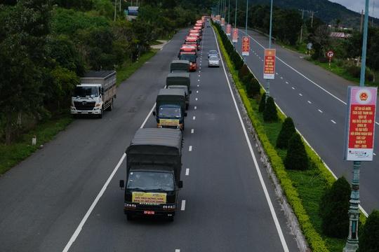 6.000 tấn rau sạch từ Lâm Đồng chuyển tặng TP HCM - Ảnh 6.