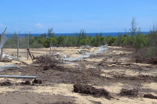 Phá 5,26 ha rừng phòng hộ làm nhà máy điện: Làm lén lút, sao gọi là nhầm lẫn? - Ảnh 1.