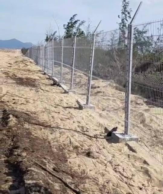"""Tình tiết bất ngờ vụ phá """"nhầm"""" 5,26 ha rừng phòng hộ ven biển Bình Định - Ảnh 2."""