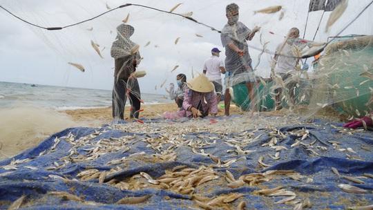 Ngư dân Bà Rịa- Vũng Tàu vỡ òa khi cá, tôm đầy thuyền trong ngày đầu mở biển - Ảnh 1.