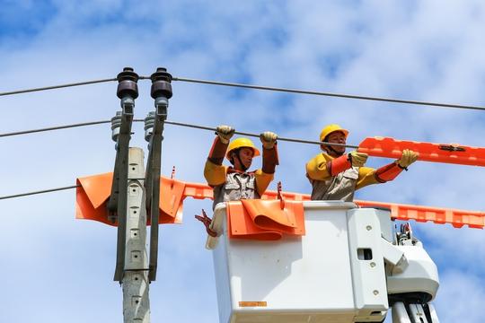 EVNCPC nâng cao độ tin cậy cung cấp điện - Ảnh 3.