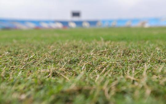 CLIP: Mặt cỏ sân Mỹ Đình ra sao sau khi bị chê là bãi chăn bò? - Ảnh 5.
