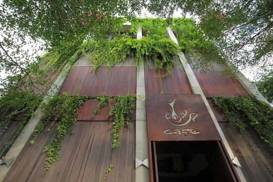 Quán cà phê tàng hình ở Hội An - Ảnh 6.