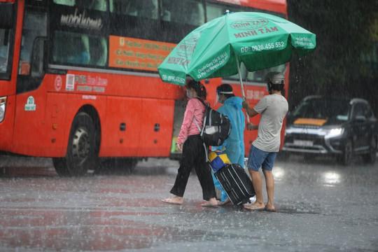 Quảng Ngãi đón 135 thai phụ, trẻ em về quê bằng xe buýt - Ảnh 2.