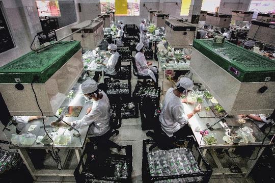 Nhiều doanh nghiệp phía Nam tạm ngưng hoạt động, sản lượng tiêu thụ điện giảm mạnh - Ảnh 1.