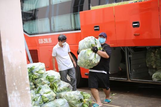 Phương Trang vận chuyển nông sản Đà Lạt gửi tặng người dân TP HCM - Ảnh 1.