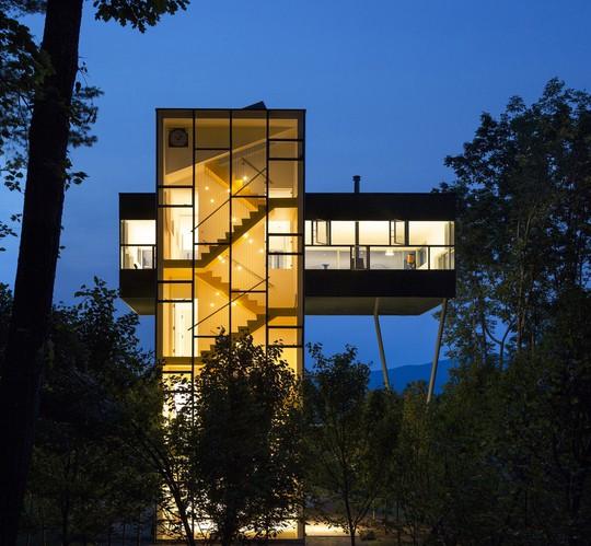 Ngôi nhà hình dấu cộng, trong suốt giữa rừng cây - Ảnh 2.