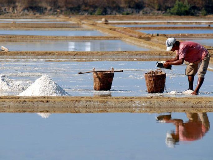 Những năm gần đây người dân đã đầu tư trải bạt trên ruộng muối nên chất lượng và giá bán muối cũng cao hơn so với trước đây