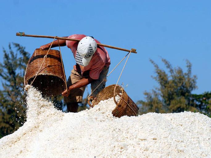 Hình thức sản xuất này mang lại kết quả tốt cho các diêm dân. Muối làm ra đạt chất lượng và bán được giá cao.