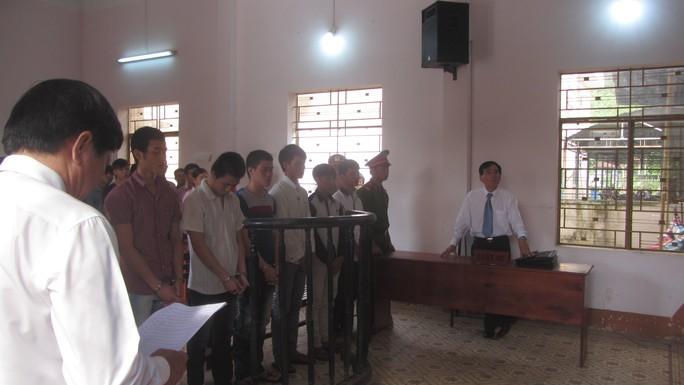 6 bị can hầu tòa vì tội hủy họa tài sản