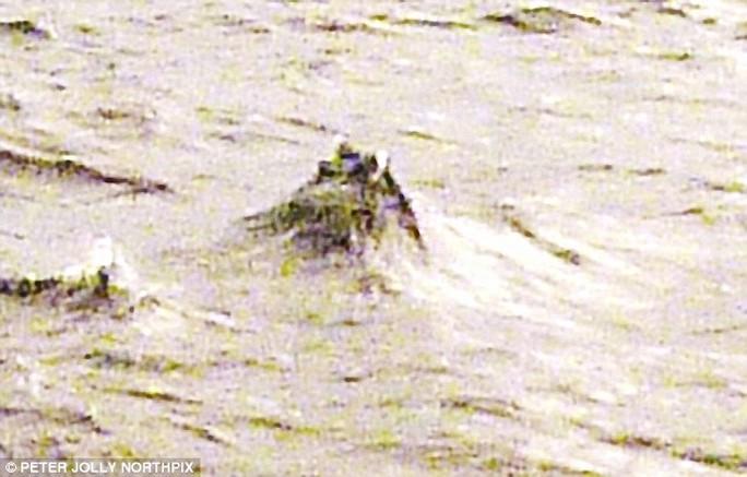 Hình ảnh sinh vật bí ẩn giữa hồ Loch Ness do Jonathan Bright công bố tuần trước