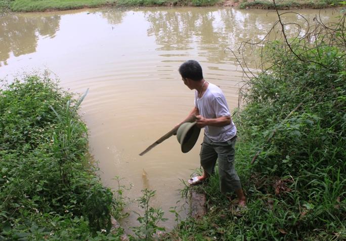 Nước thải của trại heo thải ra nguồn nước chưa qua xử lý.