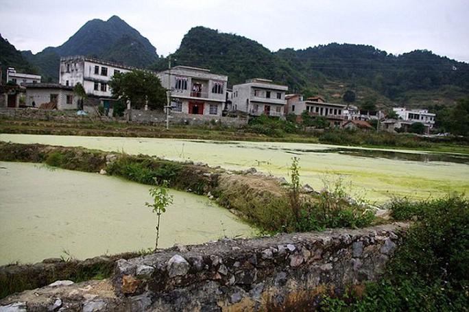 Người dân trồng trọt, nuôi cá trên vùng đất ô nhiễm