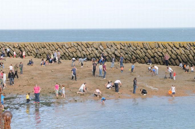 Hơn 150 người đến bãi biển đào vàng. Ảnh: Barcorft Media