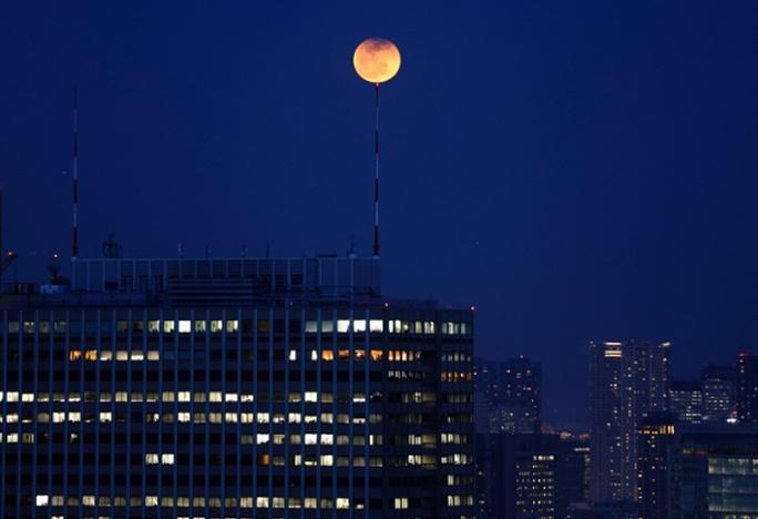Trăng máu giống như quả bóng bay trên bầu trời Tokyo, Nhật Bản. Ảnh: Reuters