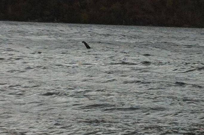 Hình ảnh được cho là quái vật hồ Loch Ness do ông