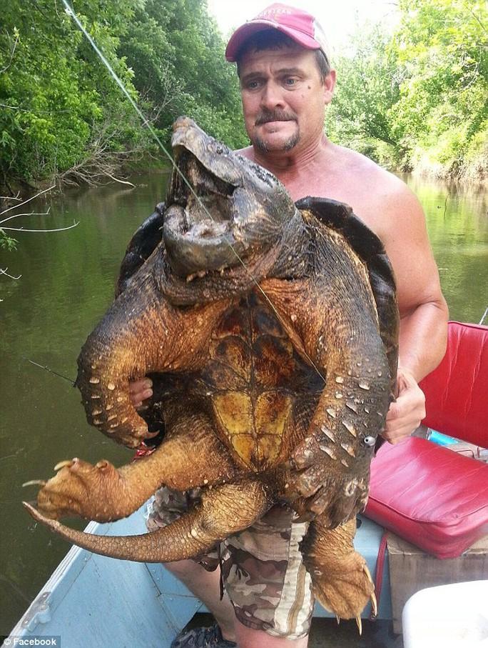 Ông Harrell và con rùa cá sấu lạ