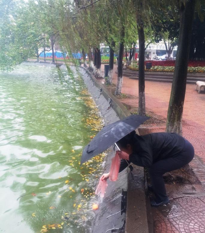 Người dân thả cá chép tại hồ Hoàn Kiếm