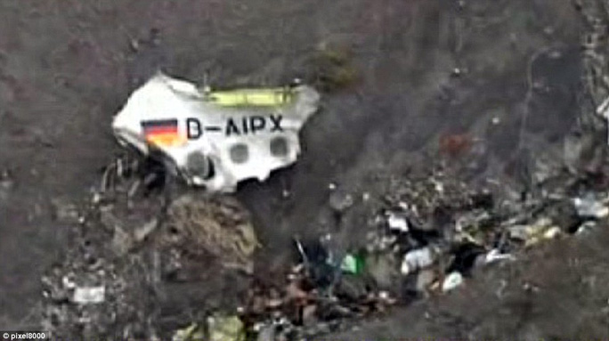 Wreckage: The registration of the aircraft, which features a German flag, was one of the larger pieces of debris photographed at the crash site