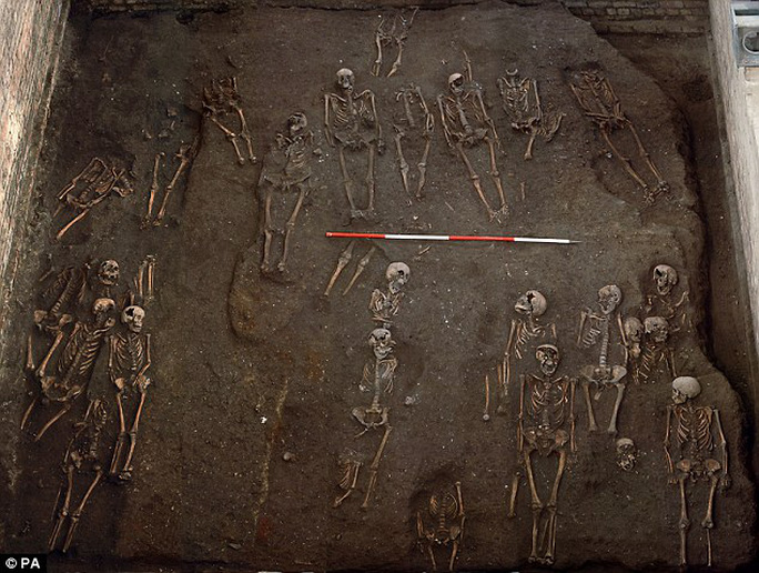 Big dig: Containing about 1,300 burials - including about 400 complete skeletons - the cemetary was found as part of the refurbishment of the Victorian building three years ago but details have only now been made public