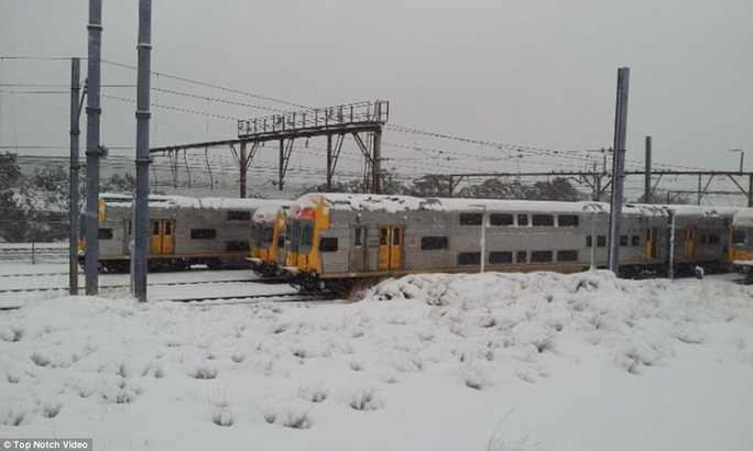 Trains have also been affected with lines between Sydney and the Blue Mountains closed until further notice