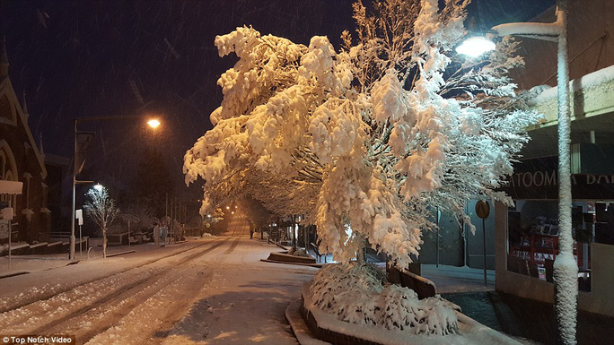 A light post in Katoomba froze over as subzero temperatures were recorded across the state
