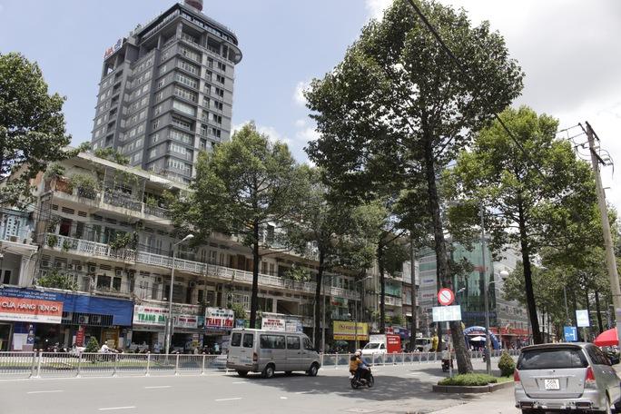 Hàng cây trên đường Lê Lợi cũng bị đốn hạ và di dời, mảng xanh sẽ được khôi phục khi công trình metro hoàn thành.