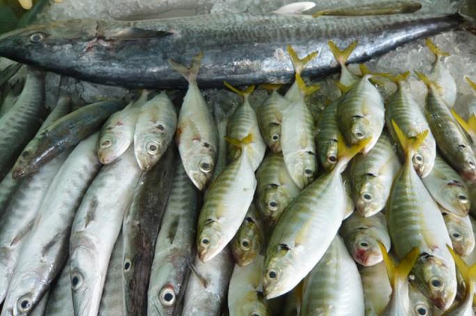 3 nguyên tắc nhận biết cá ướp hàn the, urê