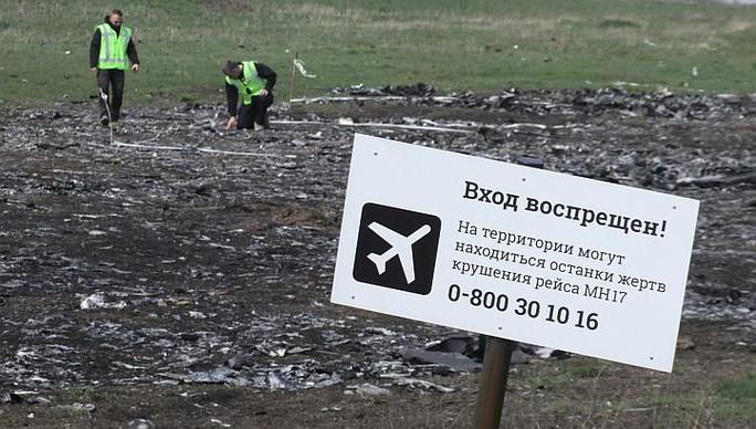 Hiện trường vụ rơi máy bay ở miền Đông Ukraine. Ảnh: Reuters