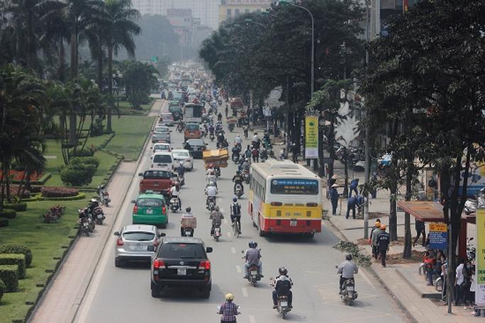 Hàng cây xanh đường Nguyễn Chí Thanh rợp bóng mát trước khi bị chặt hạ