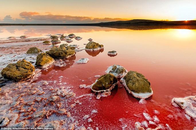 Nước hồ đổi màu do loài tảo Dunaliella. Ảnh: Caters News Agency