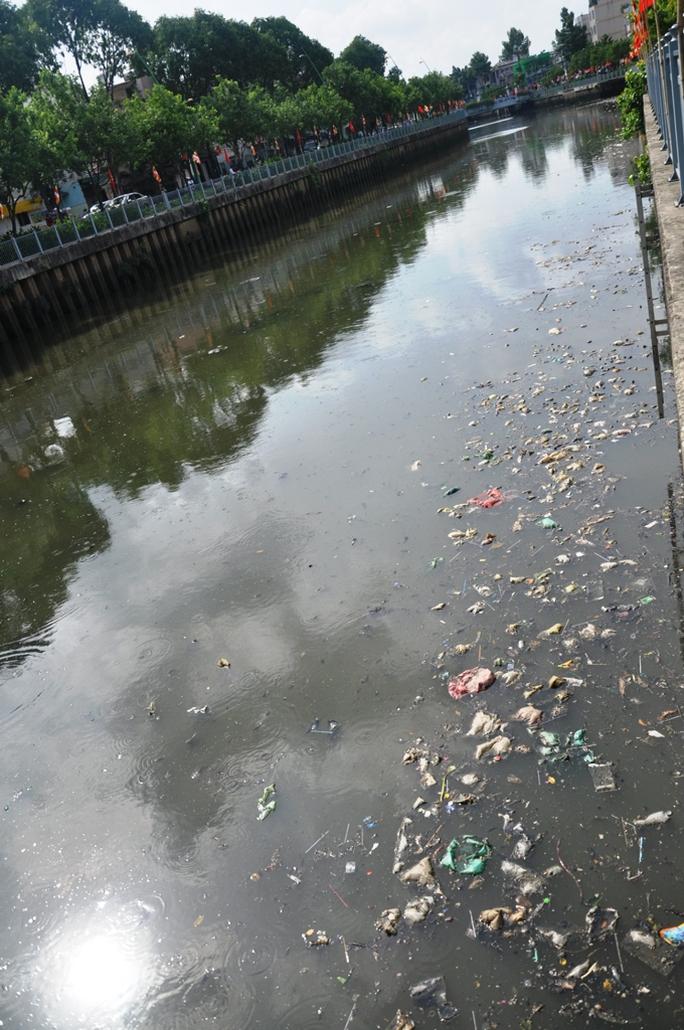 Cá ngộp thở nổi đầy kênh Nhiêu Lộc - Thị Nghè