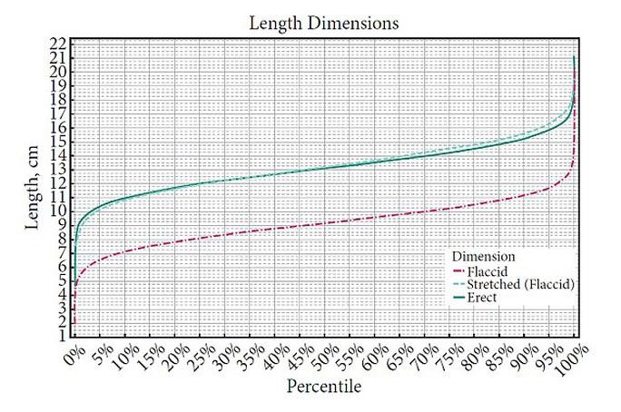Biểu đồ phân bố chiều dài của súng. Đường gạch đứt đỏ: Trạng thái bình thường, gạch đứt xanh: Trạng thái kéo dài, gạch liền xanh: Trạng thái cương cứng