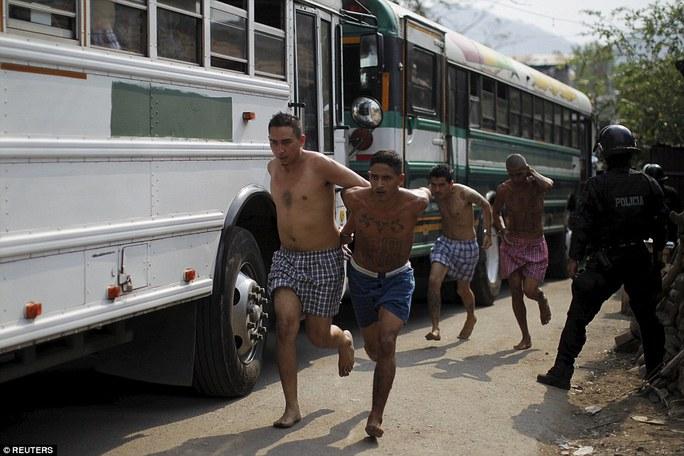 Các tù nhân được chuyển lên xe buýt. Ảnh: Reuters