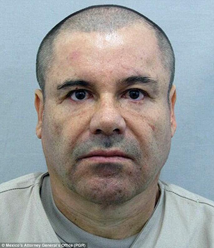 Trùm ma túy Joaquin El Chapo Guzman. Ảnh: PGR