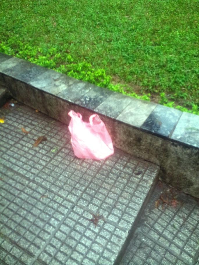 Tuy nhiên, vẫn còn một số người dân thiếu ý thức xả rác ra ven hồ Hoàn Kiếm