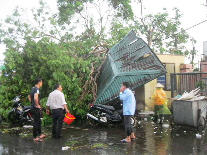 Cơn mưa kèm gió giật mạnh khiến hàng loạt cây cổ thụ đổ la liệt, đè nhiều xe máy và ô tô