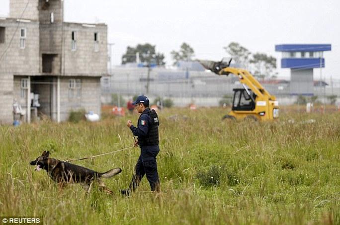 Cảnh sát Mexico đang lần theo dấu vết của ông trùm. Ảnh: Reuters