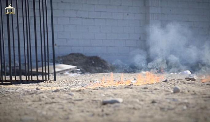 Vệt lửa trên mặt đất lan đến chiếc lồng. Nguồn: Daily Mail