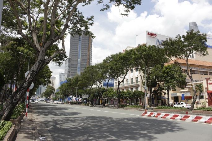 Những hàng cây thuộc giao lộ Trần Hưng Đạo – Phạm Ngũ Lão sắp bị đốn hạ để xây dựng công trình metro, đoạn công trình từ ga Suối Tiên về ga Nhà hát TP