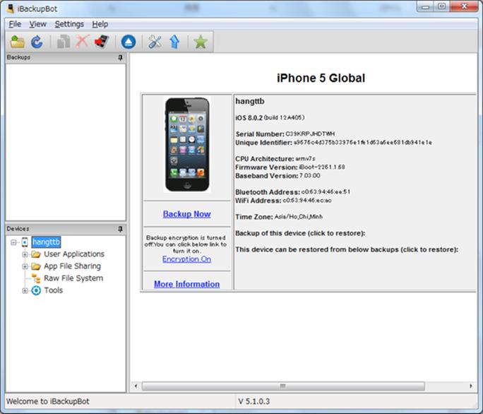 Thông tin iPhone trên giao diện iBackupBot