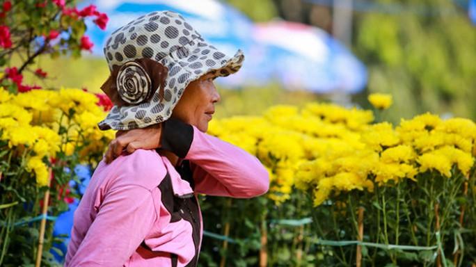 Bà Trần Thị Hằng (quê Sa Đéc, Đồng Tháp) mệt mỏi chờ khách mua hoa tại công viên Lê Văn Tám - Ảnh: Tiến Thành