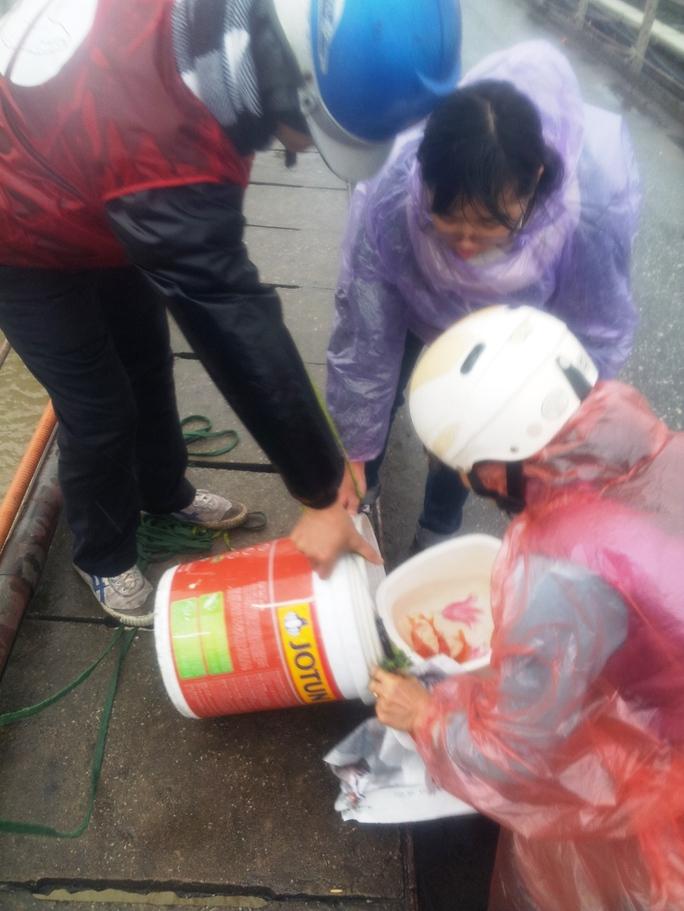 Người dân đang được các bạn tình nguyện viên giúp đỡ thả cá