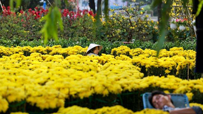 Người bán hoa ở công viên Lê Văn Tám mòn mỏi chờ khách mua - Ảnh: Tiến Thành