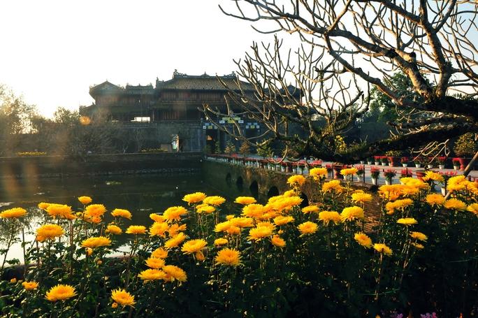 Một góc Hoàng thành Huế ngày XuânẢnh: Phạm Bá Thịnh
