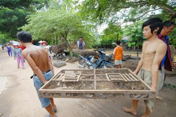 Chợ chuột mua bán sôi động nhất từ 5 - 9 giờ sáng, mỗi ngày có từ 3 - 5 tấn chuột được thu mua làm thịt để tiêu thụ cho các nhà hàng và quán nhậu ở các tỉnh miền Tây, TP HCM và cả ra miền Bắc.