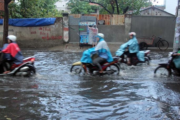 Cơn mưa chiều này được nhiều người ví là cơn mưa vàng