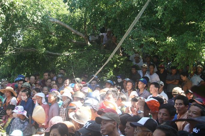 Nhiều người dân còn trèo cả lên cây để xem phiên tòa