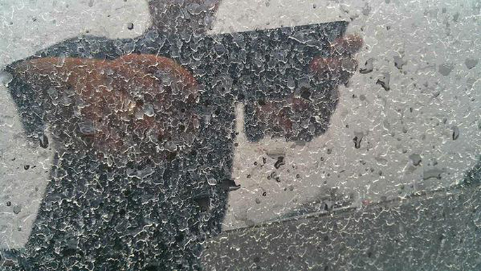 Bụi bẩn hòa cùng nước mưa