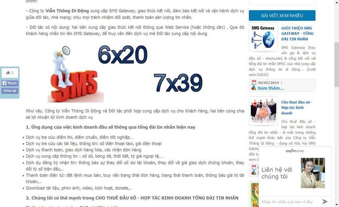 Các dịch vụ cho thuê đầu số 6xxx, 7xxx, 8xxx được chào mời công khai trên mạng